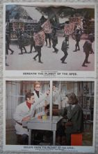 Beneath the Planet of the Apes, 2 Original Movie Stills, James Franciscus, '70